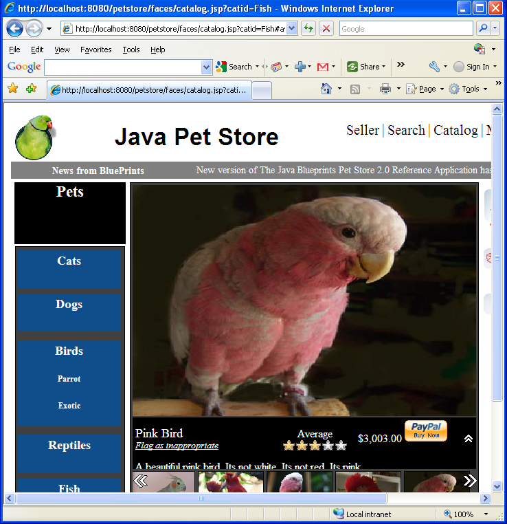Well, another cute exotic bird found in Java Pet Store demo example