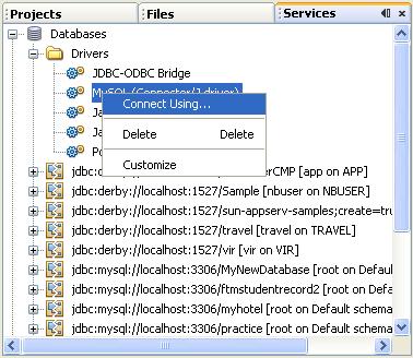 A step-by-step tutorials on Java visual web Java Server