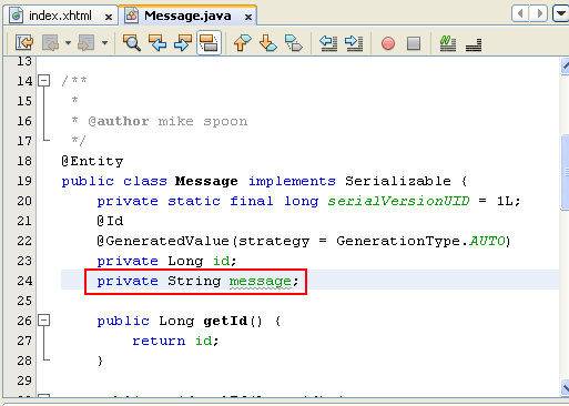 NetBeans IDE: selecting the Java web application project, adding object variables