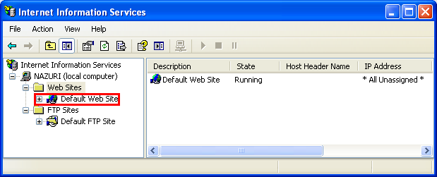 The IIS default web site